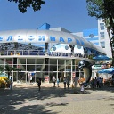 NEMO Dolphin Therapy Center in Kharkiv, photo