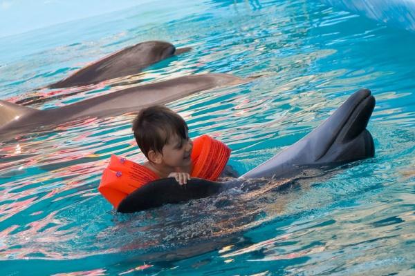 Дельфинотерапия в Тайланде. Паттайя., фото на сайте therapynemo