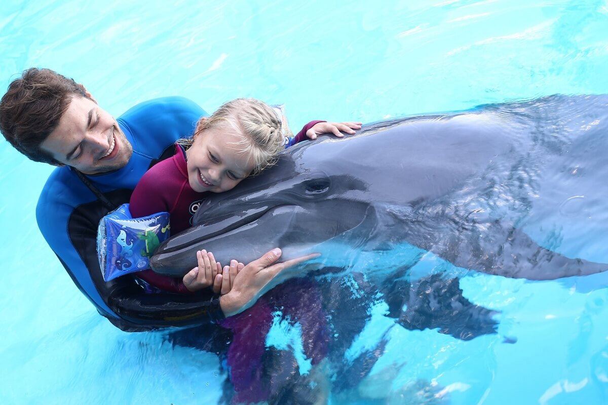 Dolphin therapy on the website therapynemo.com , photo №2